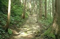 笠松峠の畳石路1